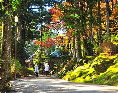 © Tokushima Prefecture Tourism Association